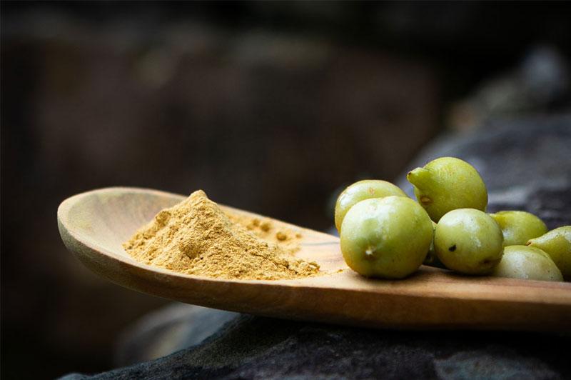 Kakadu Plums and Kakadu Plum Powder
