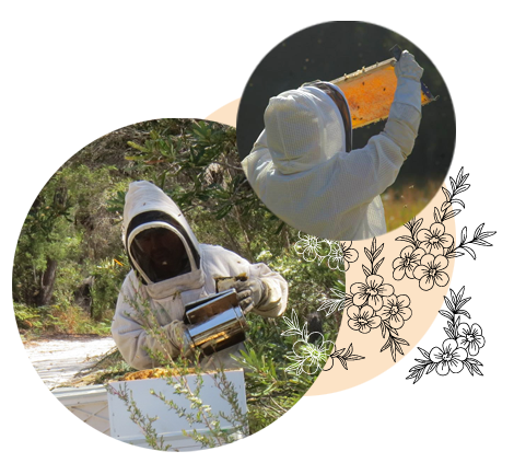 Manuka Honey flowers beekeeper and beehives