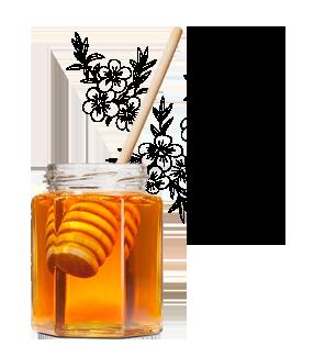 bioactive manuka honey